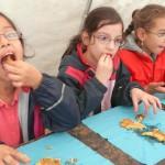 Ökologiestation Bergkamen - Die Kinder des Kartoffelkönigs